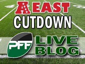 2013-Div-Cutdown-Blog-AFCE