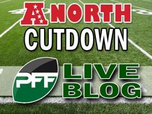 2013-Div-Cutdown-Blog-AFCN