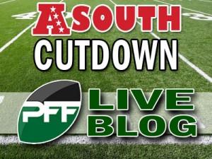 2013-Div-Cutdown-Blog-AFCS