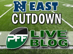 2013-Div-Cutdown-Blog-NFCE