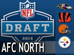 2014-draft-needs-AFCN