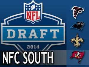 2014-draft-needs-NFCS