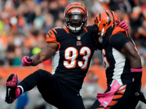 michael johnson bengals