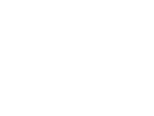 PFF DFS Logo